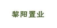 河南黎阳置业有限公司